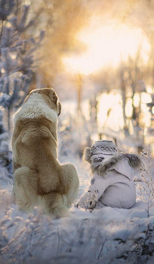 """""""Frosty Morning"""" --  photo by @elena_shumilova"""