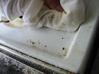 How to Clean a Stove: Stove