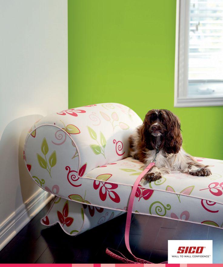 1000 images about green paint colour inspiration vert inspiration couleu - Peinture little green ...