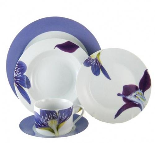 Iris Dinnerware