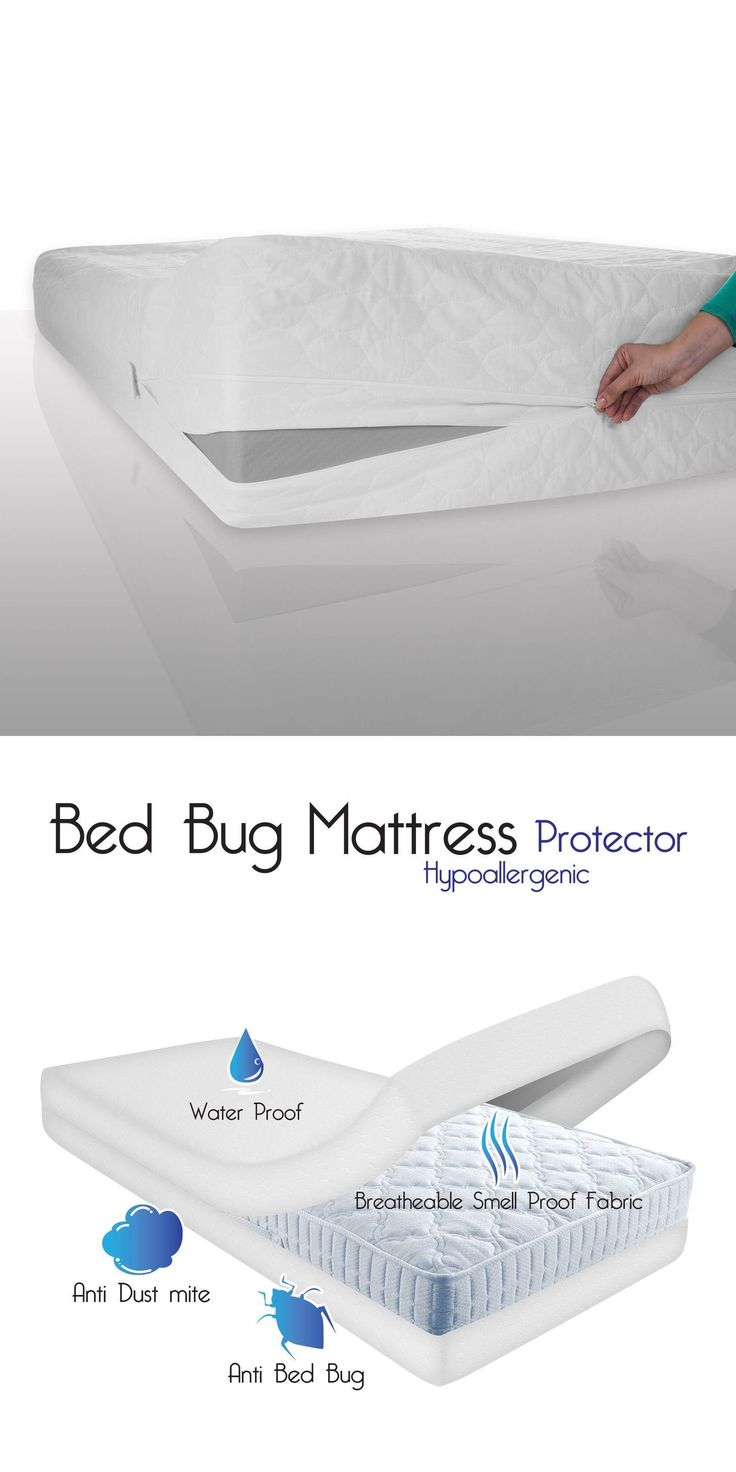 best 25+ bed bug remedies ideas on pinterest | bed bug spray, bed
