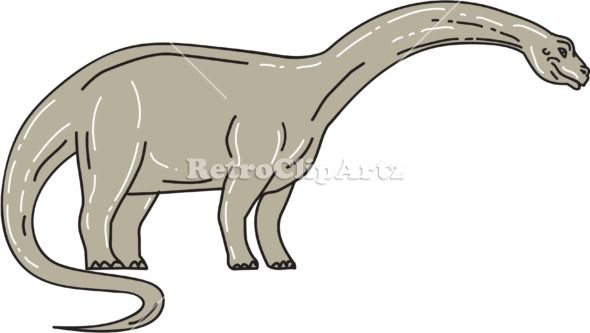 """Brontosaurus Dinosaur Looking Down Mono Line Vector Stock Illustration.  Illustration of a Brontosaurus meaning """"thunder lizard, a genus of gigantic quadruped sauropod dinosaurs that lived in the late Jurrasic epoch looking down viewed from the side set on isolated white background. #illustration   #BrontosaurusDinosaur"""