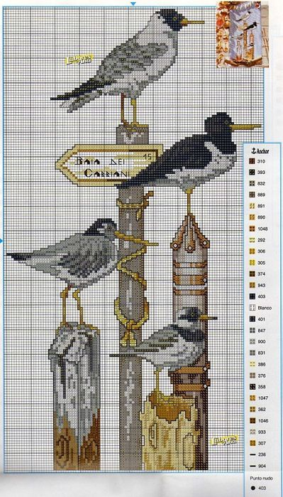 seagulls on post