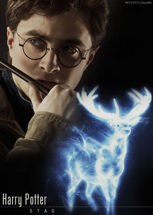 Harry Potter and his patronus