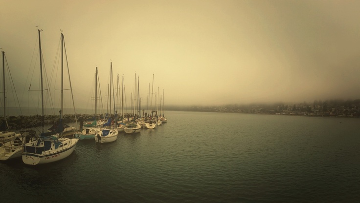 White Rock Beach, FOG, The Pier, iPhoneography, iphone, photography, trevor, brucki, photographer, vancouver, landscape