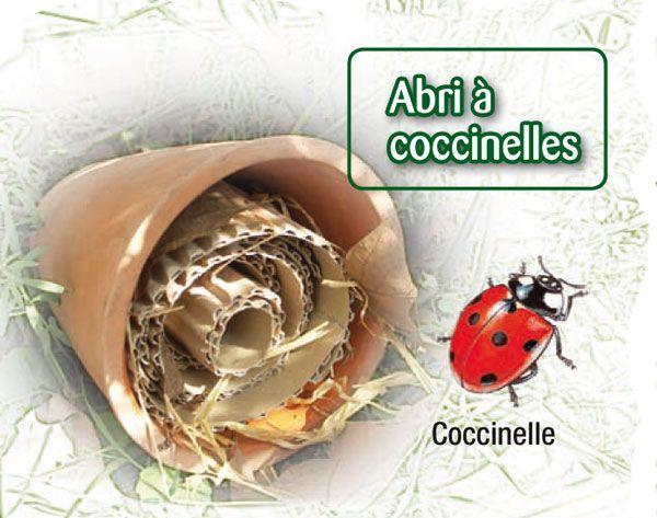 Les coccinelles, dévoreuses de pucerons, s'endorment à l'automne sous les écorces ou les pierres, jusqu'au printemps. Un assemblage de pots ...
