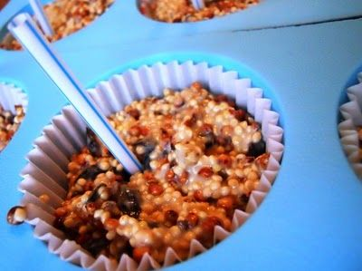 more bird seed cakes, book, recipeCreative Mindfulness, Crafts Ideas, Recipe, Birds Feeders, Birds Seeds, Kids Ideas, Kids Activities, Seeds Cake, Winter Christmas Crafts