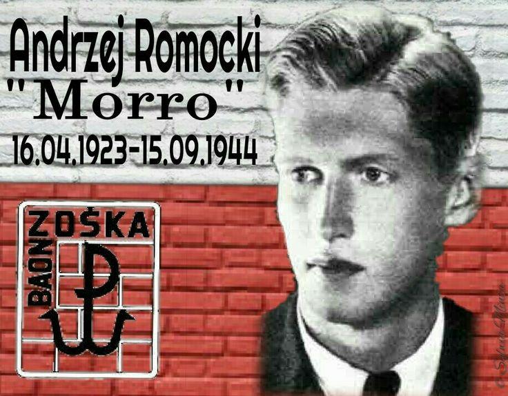 """Andrzej Romocki """"Morro"""""""