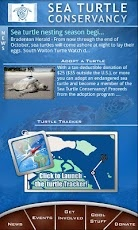 The Sea Turtle App for Android