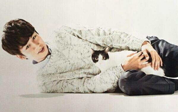 Nakamaru Yuichi + cat