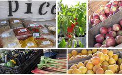 Toowoomba Markets - WeekendNotes