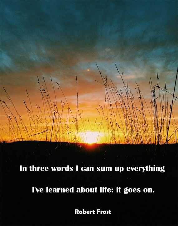 images about the inspirational quotes on pinterest   sugg    robert frost  life  quote on http   worldbestessays com blog