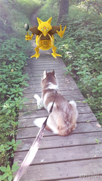 pokemon-go-photos pokemon-dog-hike