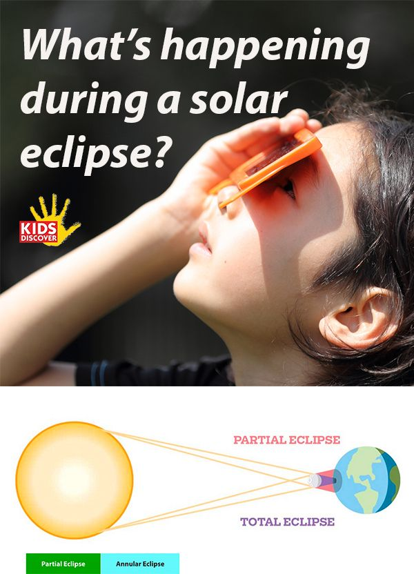 Teach kids about the Great American Solar Eclipse with these engaging Kids Discover resources! They'll learn: What's happening during an eclipse, with kid-friendly graphics and diagrams; The difference between a total, partial, and annual solar eclipse; How the moon waxes and wanes, and what's happening during a lunar eclipse; The history of how we've come to understand eclipses, and the myths and legends that once explained our cosmos! | Kids Discover