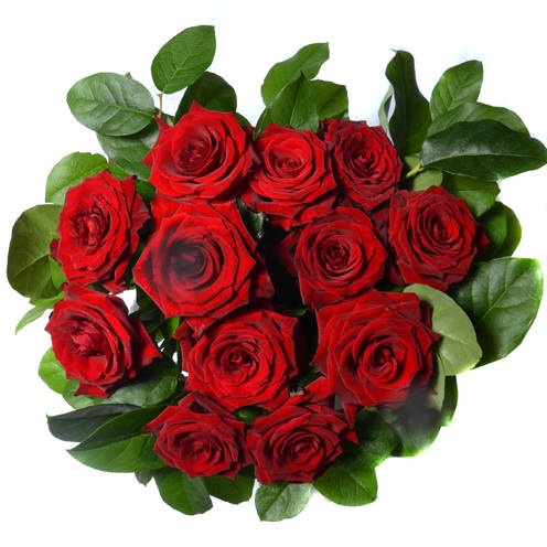 Tesco Red Roses Tried And Tested Red Roses Rose Home And Garden