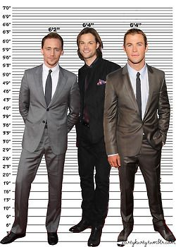 "Tom Hiddleston 6'2"", Jared Padalecki 6'4"", Chris Hemsworth ..."
