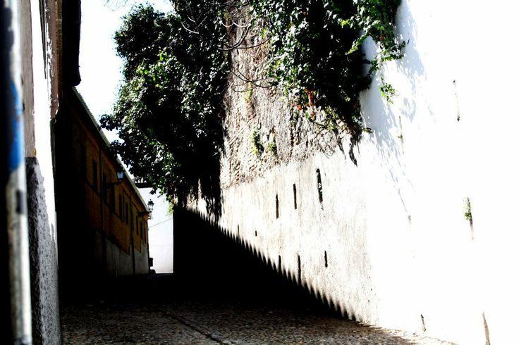 Shadows, Granada..