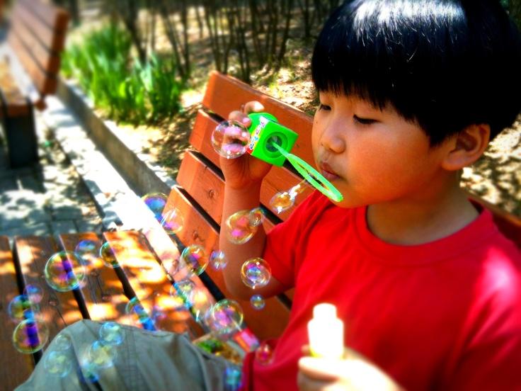 한가로이 공원에서 비누방울 놀이하는 아들녀석