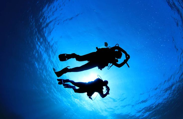 diving experiences  @ http://www.eaglespalace.gr
