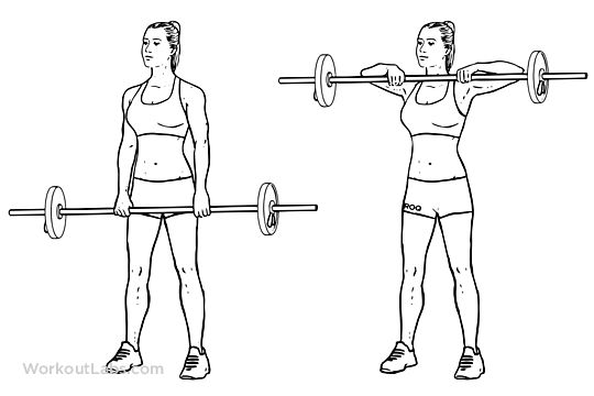 Upright Barbell Row Workout For Shoulders Pinterest