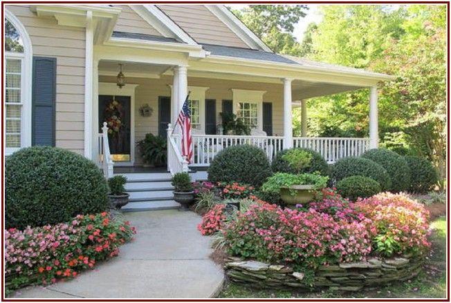 extravagant yard bright landscape