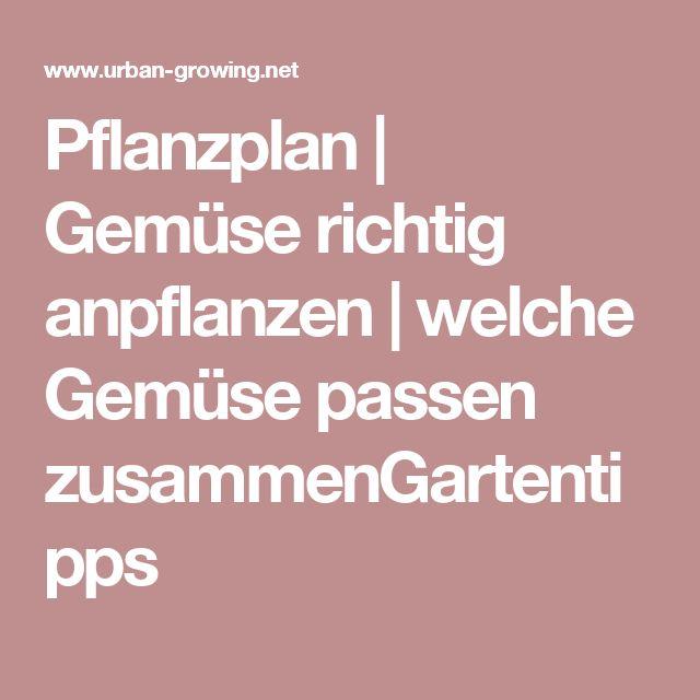 17 best ideas about pflanzplan on pinterest blumengarten. Black Bedroom Furniture Sets. Home Design Ideas