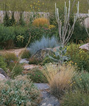 Boulders create a recurring textural theme that helps tie the garden together.