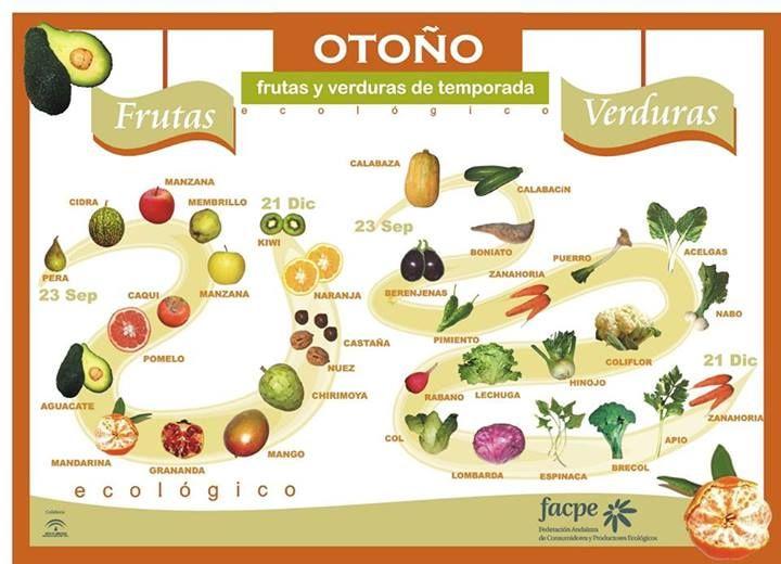 Frutas y verduras de otoño.