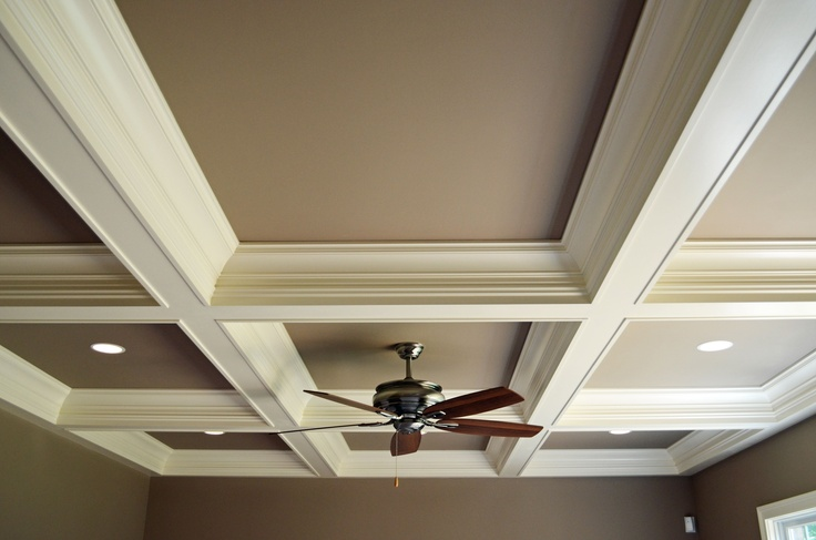 Coffered Ceiling Or Tray Ceiling: 1000+ Images About Specialty Ceiling Treatments On