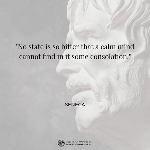 Daily Stoic Stoic Wisdom For Everyday Life Seneca Quotes Stoic Hopeless