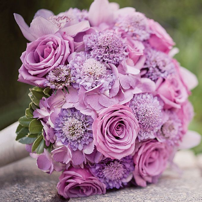 Purple rose and scabiosa wedding bouquet; Photo by Jeremy Harwell weddings