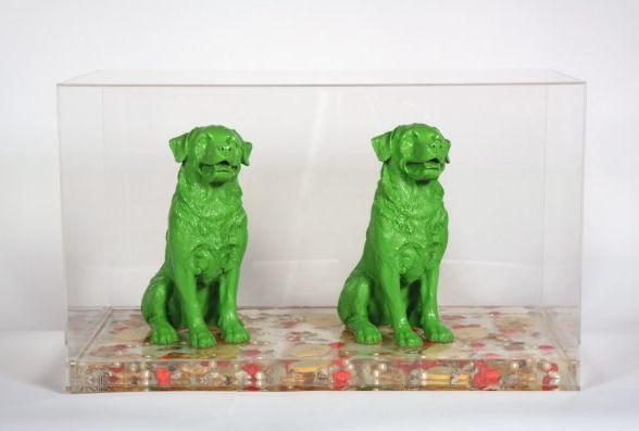 Twee honden in perspexbox