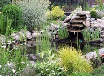 Les 25 meilleures id es de la cat gorie petits bassins de jardin sur pinterest petites - Bassin d eau plastique avignon ...