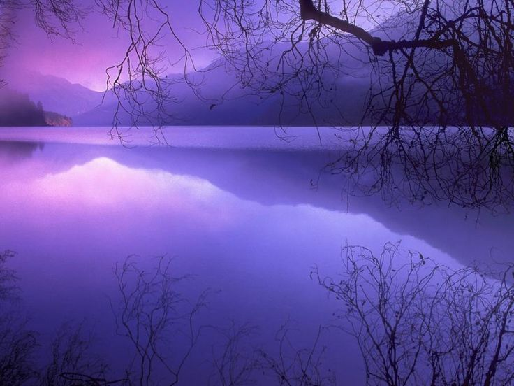 .: Water, Indigo, Purple Sunsets, Color, Lakes, Olympics National Parks, Crescents, Places, Purple Sky