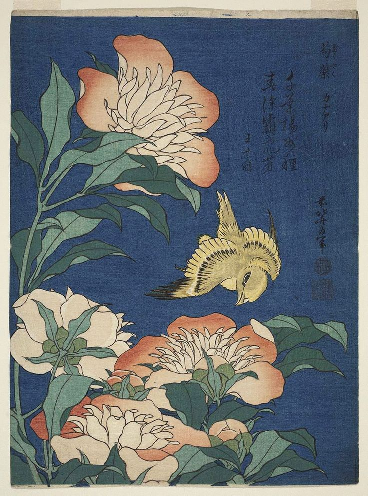 """Herbaceous Peony and Canary from the series """"Small Flowers,"""" c.1834. Katsushika Hokusai. Woodblock print; ink and color on paper"""