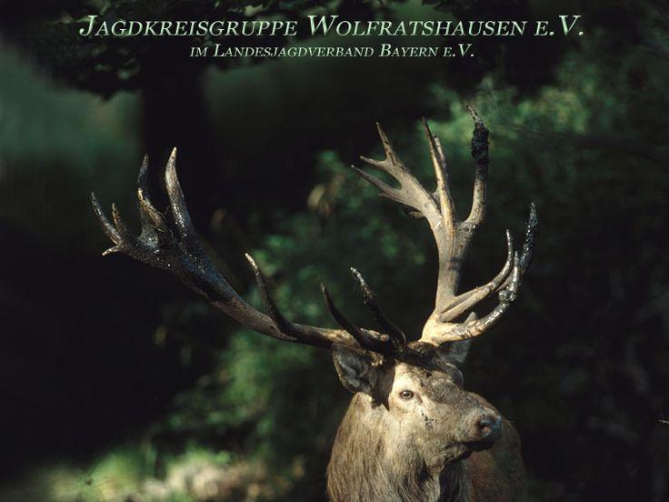 Jagdkreisgruppe Wolfratshausen e.V.