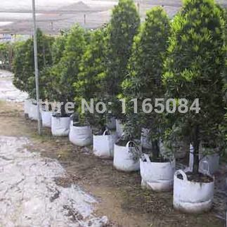 Manufacturers selling thicke white non-woven garden bag for planting, tree planting bag,nutrition bag, planting pots,40*50cm