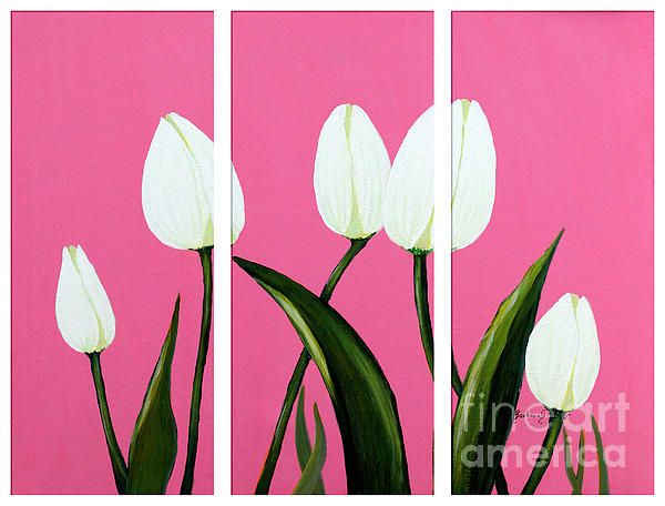 White Tulips on Pink Triptych by Barbara Griffin.