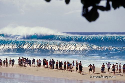 watching big waves rolling in at Pipeline, on the north shore of Oahu, Hawaii.