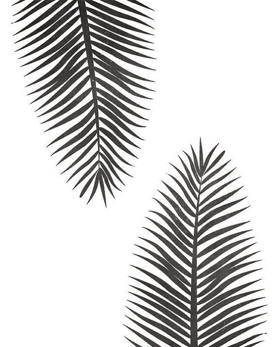 Black And White Tropical Leaf Instant Download Art Printable Etsy Black And White Wallpaper Black And White Painting Black And White Leaves Black and white engraved ink art. black and white tropical leaf instant