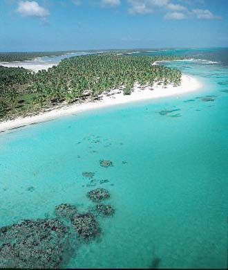 Saona Island, Dominican Republic... Really wish I could go back!