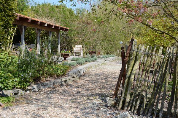 17 best images about de tuin van intratuin 39 s gravenzande for Intratuin s gravenzande