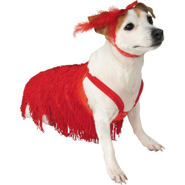 18 best Puppy Costumes images on Pinterest | Animal ...