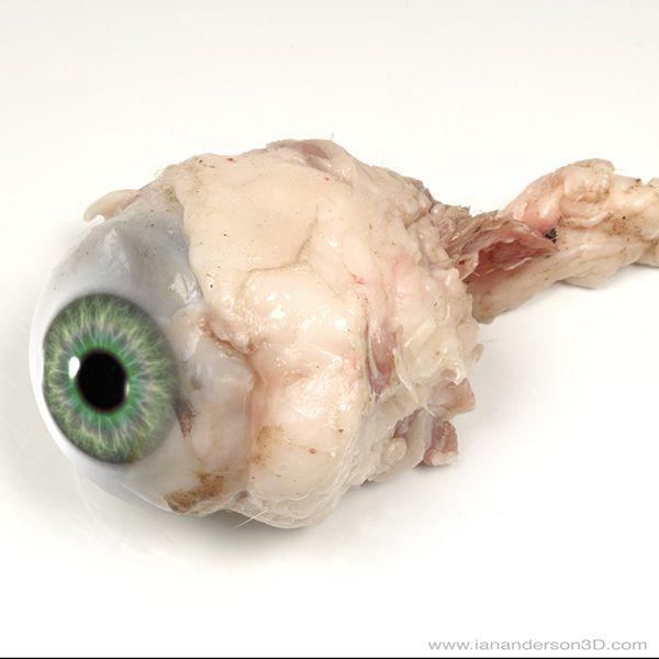 An eyeball...  MODO and photography