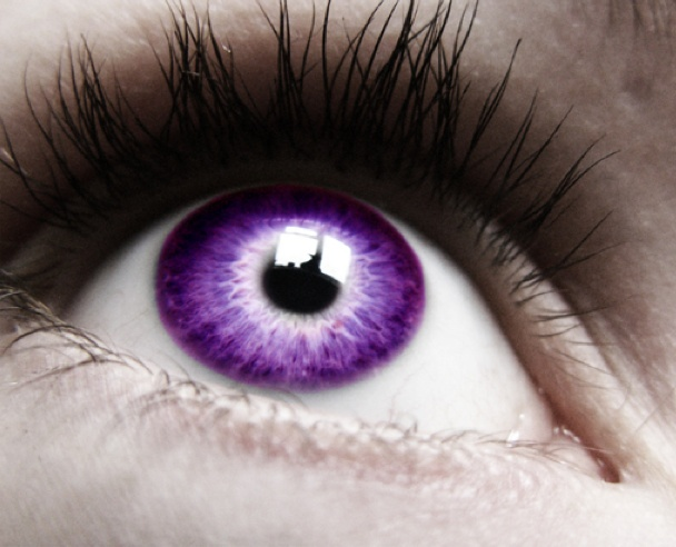 17 Best Images About Purple Eyes On Pinterest Canada