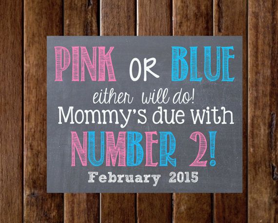 Pink or Blue Either Will Do - Pregnancy Announcement- I'm being promoted to -bis sister- big brother-pegnancy