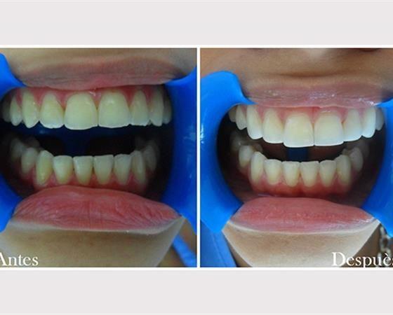 Eliana Alejandra Zequeira Londoño  Odontólogo