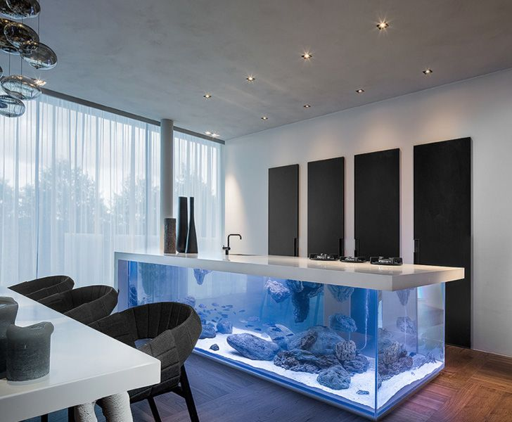 Ocean Kitchen. firm: Designer olandese Robert Kolenik; description: the Ocean Kitchen is a massive aquarium topped with an L-shaped slab of Corian that lifts up with the touch of a button. Each aquarium is limited edition and made-to-measure, and the units come complete with plenty of hidden storage space to keep your kitchen organized.