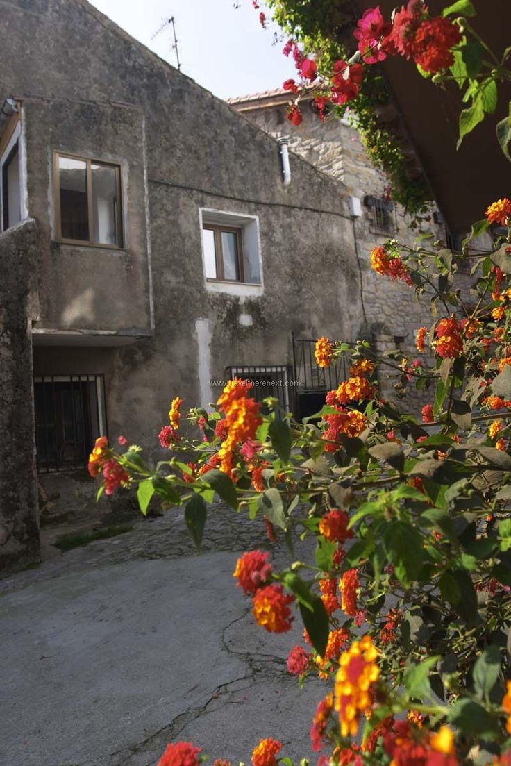 Santillana del Mar - Flowers on the street of Santillana del Mar  #spain #santillanadelmar #village #history #discover #travel #traveltherenext