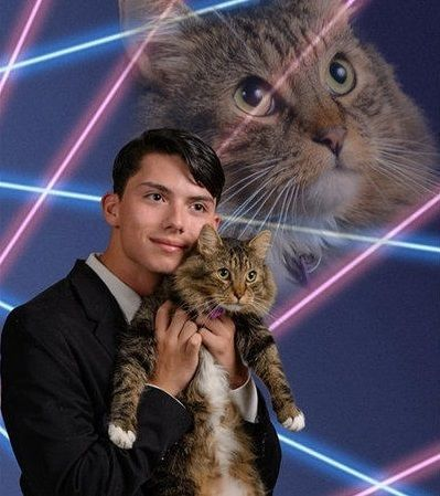 Kid Takes 'Unique' Senior Portraits to a Whole New Level With Cats ...
